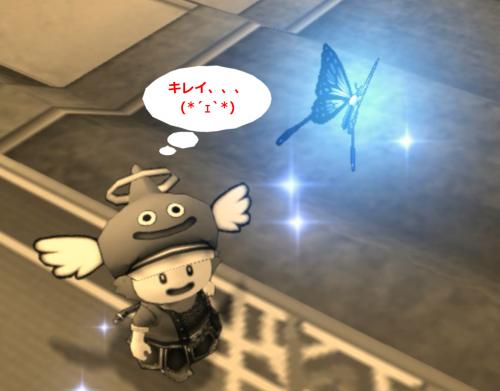 ミシュアの記憶の蝶